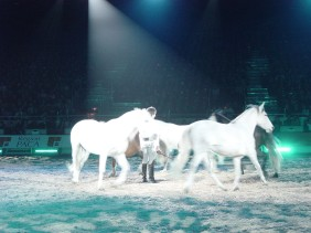 Cheval Passion 2009