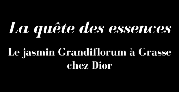 Jasmin Grandiflorum Dior