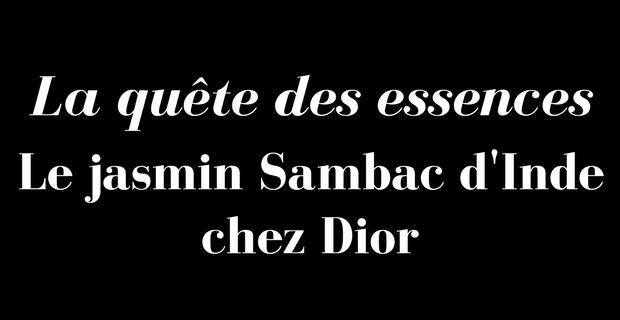 La quête des essences de Dior, le Jasmin Sambac d'Inde