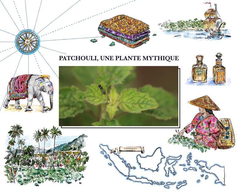Conférences olfactives Fragonard