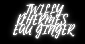 Twilly d'Hermès Eau Ginger